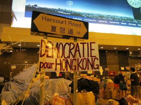 «самый чистый и экологичный протест в мире»